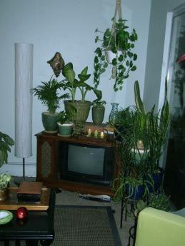 grandad's tv