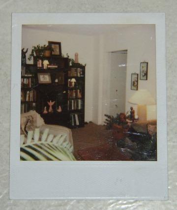 bookshelf niche