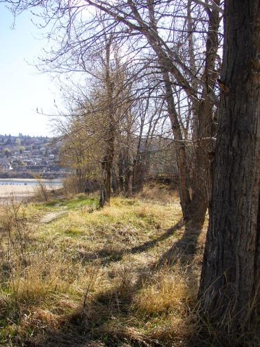 north thompson river overlander park